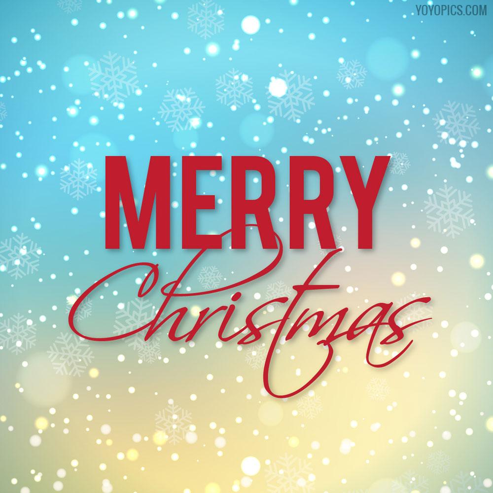 Snow Merry Christmas Greeting Card Yoyo Pics